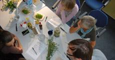 Ausbildung Klostermedizin und Phytotherapie